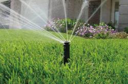 プロスプレースプリンクラーの芝生自動散水