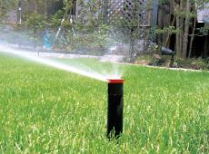 埋設スプリンクラーで芝生へ自動で水やり