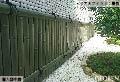 白玉石,中庭,青竹