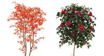 人工樹木-和木