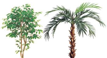 人工樹木-洋木
