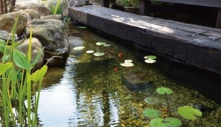 池を簡単に設置、維持管理
